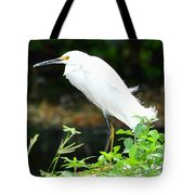 Snowy Egret In The Everglades Tote Bag