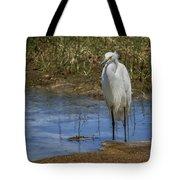 Snowy Egret Of Chincoteague No. 3 Tote Bag