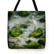 Snowy Egret On Mossy Rocks Tote Bag