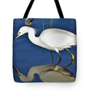 Snowy Egret Reflection Tote Bag