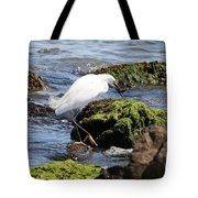Snowy Egret  Series 2  2 Of 3  Preparing Tote Bag