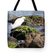 Snowy Egret  Series 2  3 Of 3  Adjusting Tote Bag