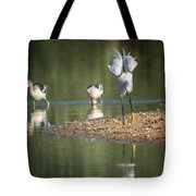 Snowy Egret Stretch 4280-080917-2cr Tote Bag