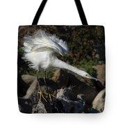Snowy Egret Stretch Tote Bag
