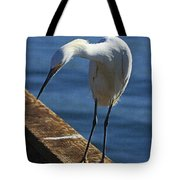 Snowy Egret That Minnow Will Be Fine Tote Bag