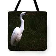 Snowy Egret View 3 Tote Bag