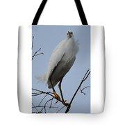 Snowy Egret  Watching Tote Bag