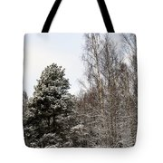 Snowy Forest Edge Tote Bag