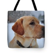 Snowy Golden Lab Tote Bag