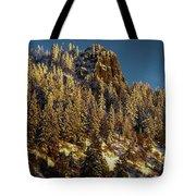 Snowy Hobart Bluff  Tote Bag