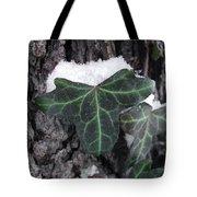 Snowy Ivy Tote Bag