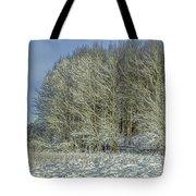 Snowy Landscape #f3 Tote Bag