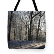 Mystical Winter Landscape Tote Bag