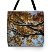 Snowy Oak Tote Bag