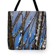 Snowy Ocotillo Sky Tote Bag
