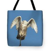 Snowy Owl 2018-17 Tote Bag