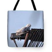 Snowy Owl 2959 Tote Bag