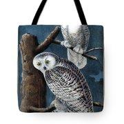 Snowy Owl Audubon Birds Of America 1st Edition 1840 Royal Octavo Plate 28 Tote Bag