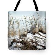 Snowy Owl In Dunes #2 Tote Bag