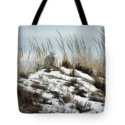 Snowy Owl In The Dunes Tote Bag