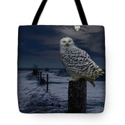 Snowy Owl On A Winter Night Tote Bag