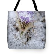 Snowy Pasqueflower Morning Tote Bag