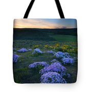 Snowy Phlox Sunset Tote Bag