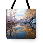 Snowy Refections Tote Bag