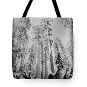 Snowy Sequoias At Calaveras Big Tree State Park Black And White 3 Tote Bag