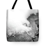 Snowy Shore Tote Bag by Nicole Parks
