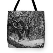 Snowy Tree Bench In Black And White Tote Bag