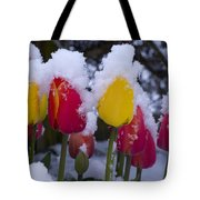 Snowy Tulips Tote Bag