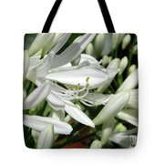 Snowy White Beauty. 7 Tote Bag