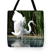 Snowy White Egret In The Wetlands Tote Bag