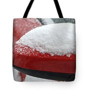 Snowy Wing Mirror Tote Bag