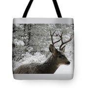 Snowy Young Buck Tote Bag