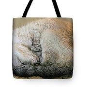 Snugglepuss Tote Bag