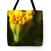 So Much More Tote Bag