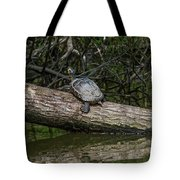 Soaking Up The Rays Tote Bag