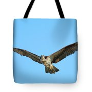 Soaring Osprey Tote Bag