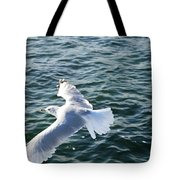 Soaring Waters Tote Bag