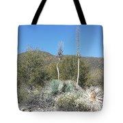 Socal Yucca Tote Bag