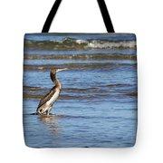 Socotra Cormorant Tote Bag