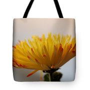 Soft And Complexed Tote Bag