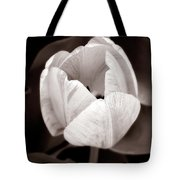 Soft And Sepia Tulip Tote Bag
