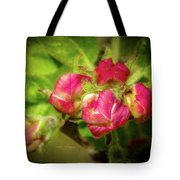 Soft And Soothing 2 Tote Bag