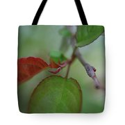 Soft Branch Tote Bag