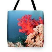 Soft Coral  Tote Bag