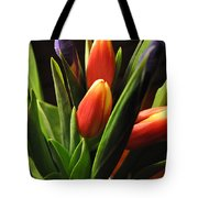 Soft Fireworks Tote Bag by Luke Moore
