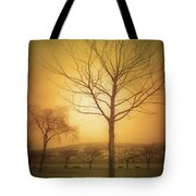 Soft Light In Summerland Tote Bag